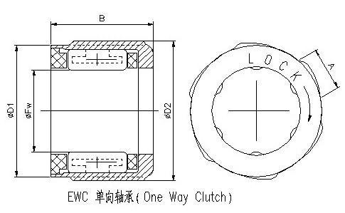EWC渔具单向轴承参